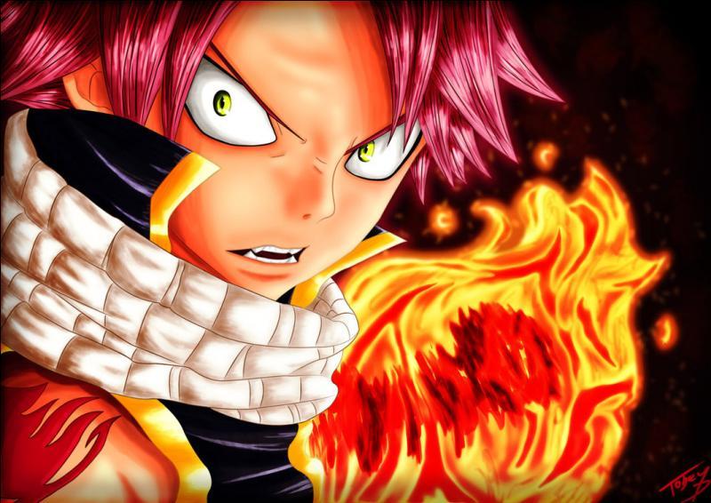 Manga : Quel est le prénom du personnage principal du manga  Fairy Tail  ?