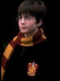 Que veut faire Harry Potter comme métier ?