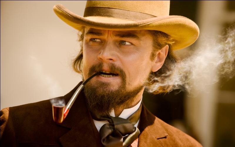 Quel personnage Leonardo DiCaprio interprète t-il dans Django Unchained ?