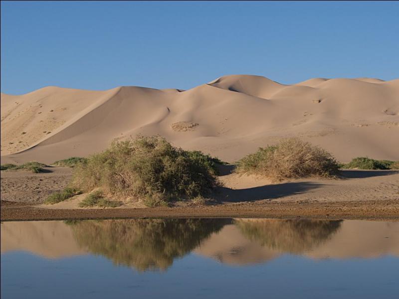 Le désert du Gobi couvre le Sud de la Mongolie et le Nord de la Chine. Quelles y sont les températures minimales et maximales relevées ?