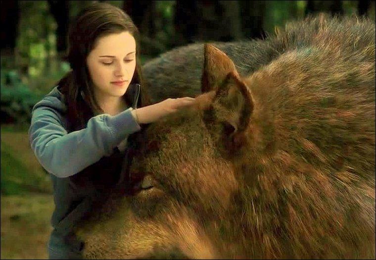 Que fait Bella pour l'en empêcher ?