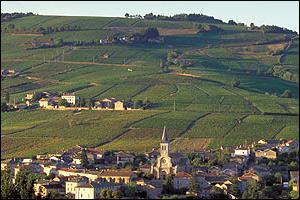 Juliénas est une commune du Rhône, surtout connue pour son vin en AOC depuis 1938. A quel vignoble appartient-il ?