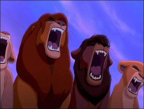 De quel Roi lion  provient la photo ?