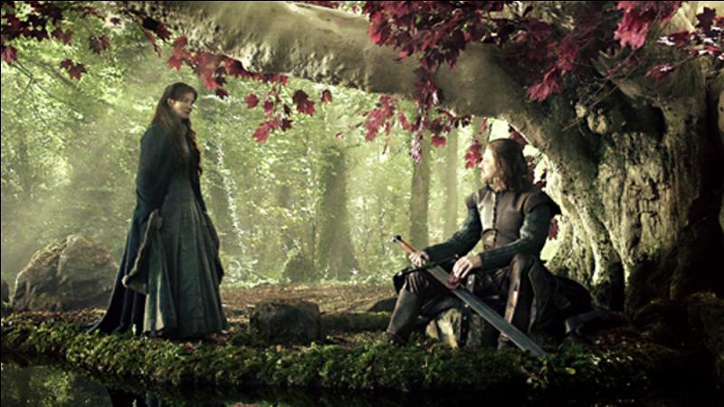 Qui n'est pas un fils d'Eddard et de Catelyn ?