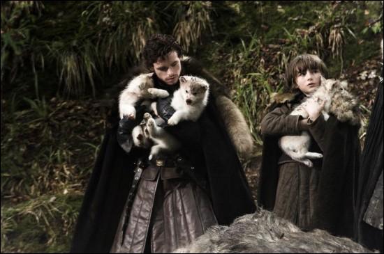 Eddard découvre le cadavre d'une femelle loup-garou dans la forêt. Combien de louveteaux y découvre-t-on au final ?