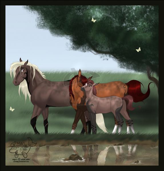 Un cheval  entier  est :