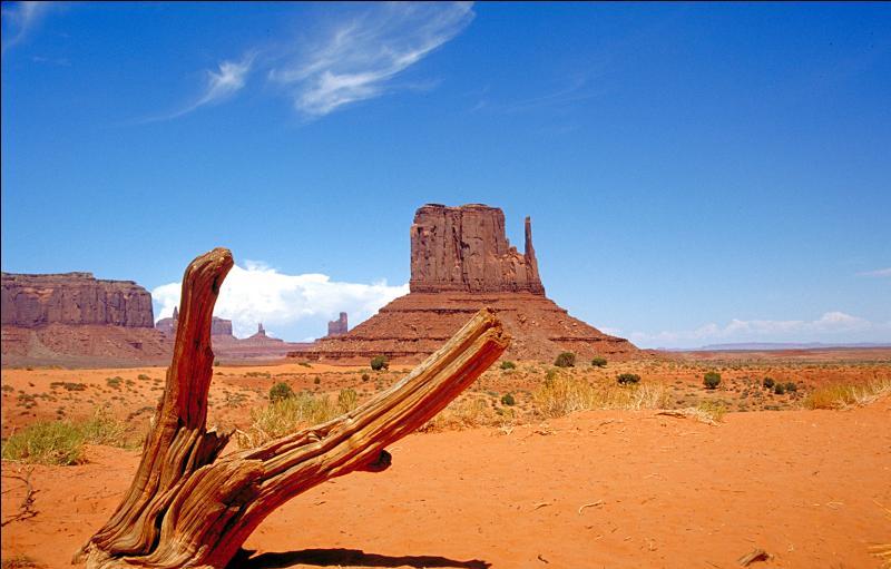 Quel paysage emblématique du western, situé aux Etats-Unis, peut-on apercevoir dans de nombreux films du genre ?