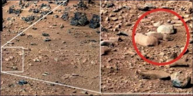 Une autre photographie plus troublante est celle-ci, qui fait apparaître ce qui semble être un rongeur sur le sol de la Planète rouge Mars, après avoir découvert ce qui semblait être un lézard. Quelle explication scientifique donne la NASA ?