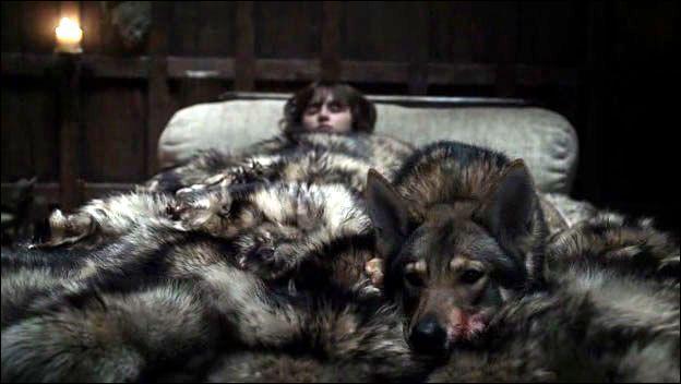 Pendant son coma, Bran chute dans un univers de brume grise où le sol se rapproche de plus en plus. Quel animal lui chuchote continuellement de voler ?