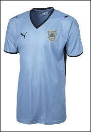 Quelle sélection porte ce maillot ?