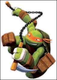 Qui est cette tortue ?