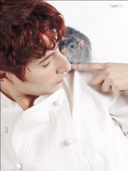 Comment s'appellent ce rat passionné de cuisine et ce garçon timide ?