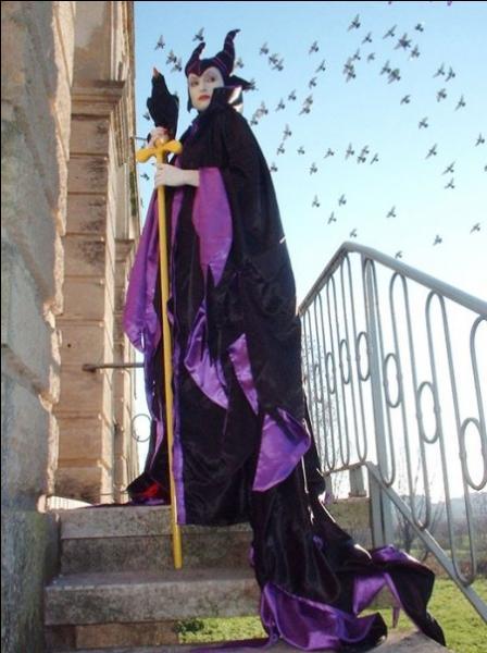Comment se nomme cette fée maléfique qui possède un corbeau ?