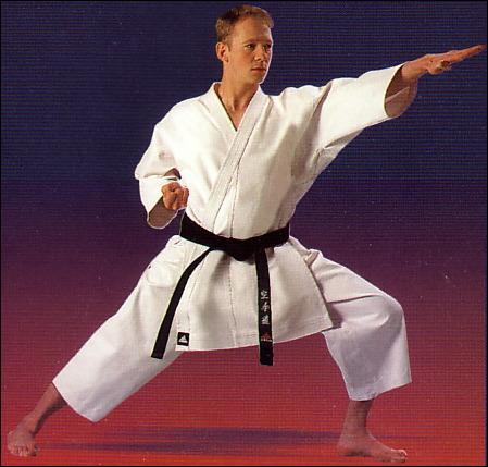 Comment s'appelle ce sport de combat japonais utilisant les pieds et les poings et comprenant de multiples variantes : shotokan, goju-ryu ... ?