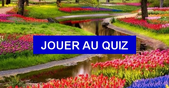 quizz dites le avec des fleurs quiz culture generale citations fleurs. Black Bedroom Furniture Sets. Home Design Ideas