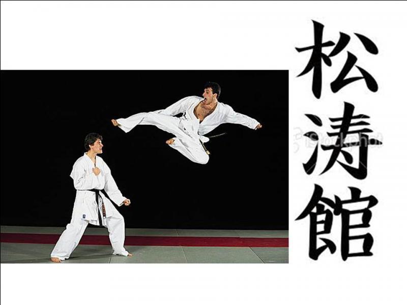 Quizz au japon 8 quiz photos art voyages for Origine des arts martiaux