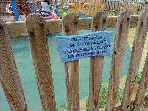 Avis à tous (cela risque de vous surprendre) : si vous entrez dans une piscine, il est possible que...