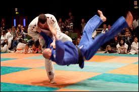 Ces athlètes pratiquent-ils le judo ou le taekwondo ?