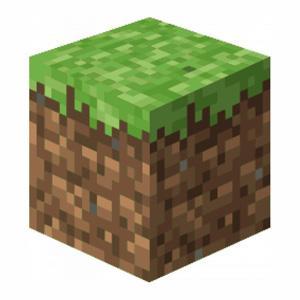 Minecraft : les blocs