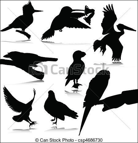 Mon premier est un instrument de musique à vent. Mon deuxième est le contraire de laid. Mon tout est un oiseau noir.