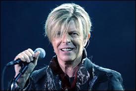 À part la beauté, quelle est la particularité physique de David Bowie ?