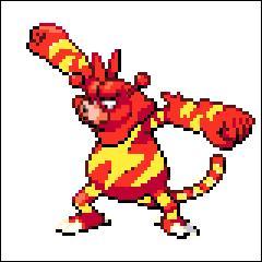Et encore un Pokémon de type feu ! Celui-ci a deux boules sur la tête avec des flammes encore au dessus ! Quant au second, il est de type électrique !
