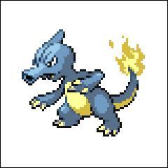 Et on continue avec un Pokémon de type feu qui ressemble à un lézard ! Le second est un Pokémon de type eau. Il doit être échangé avec une écaille draco pour évoluer !