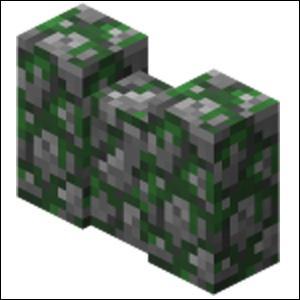 Comment s'appelle ce bloc obtenu avec des pierres se trouvant dans les donjons, forts ... ?