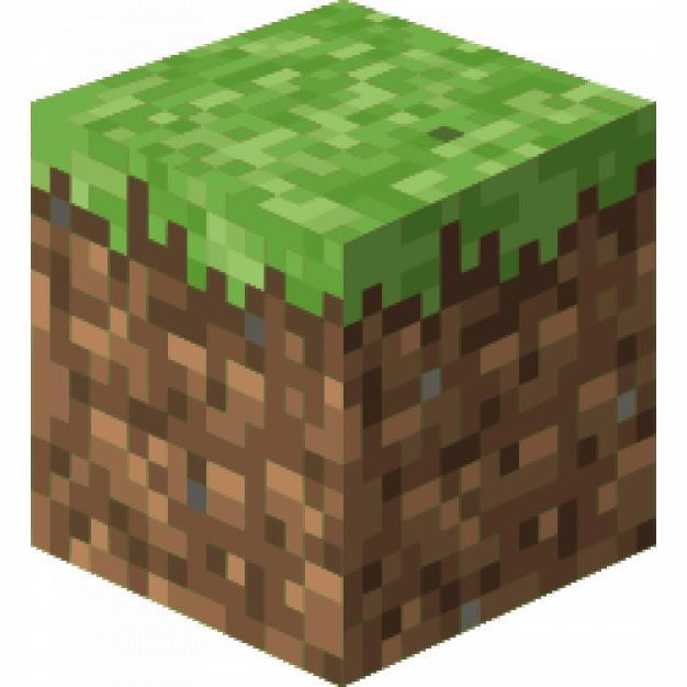 Minecraft : images à reconnaître (blocs)