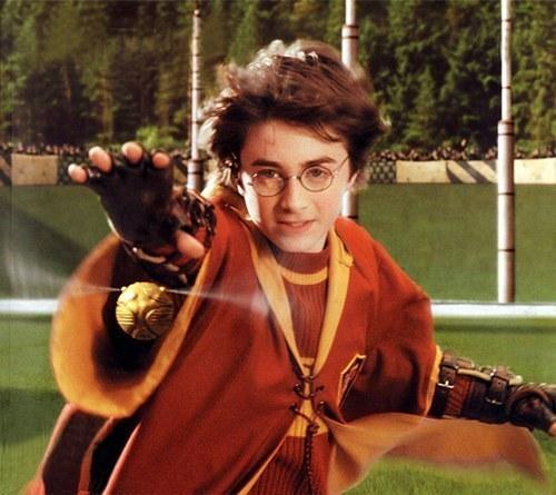 Détails des personnages de Harry Potter