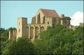 Ce château, terminé sous Louis XI, domine la vallée de Chevreuse. Son donjon fut remanié au 17éme siècle sous la supervision de Jean Racine, le célèbre dramaturge. Quel est ce château ?