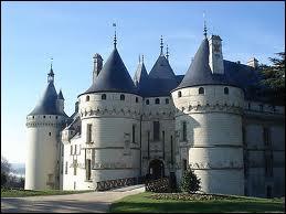 Édifié par Nicolas Bachelier, architecte toulousain célèbre, au XVIe siècle, ce château, pour ses salles du rez-de-chaussée, est de style 'troubadour'. Quel est ce château ?