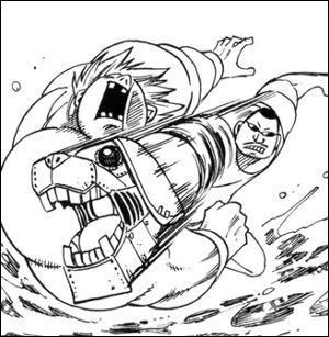 Lors de la bataille de Fairy Tail, qui est le gagnant du combat Wang contre Joey ?