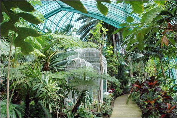 Si vous êtes parisien et fauché, il existe à Paris, dans le XVIème arrondissement, un jardin botanique absolument superbe et ... gratuit. Connaissez-vous cet endroit ?