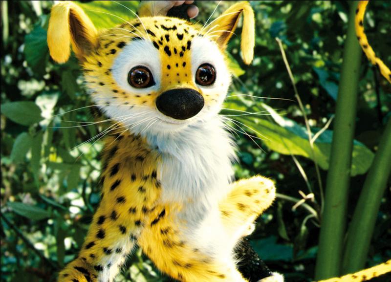 Contrairement à ce que vous pensez, le marsupilami est un animal qui existe vraiment !
