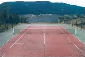 A quel sport appartient ce terrain ?