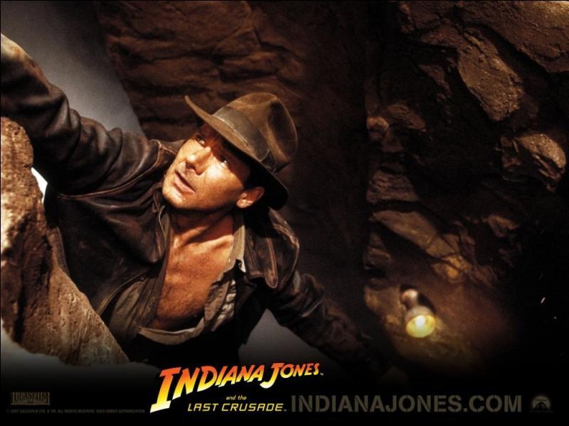 Qui a réalisé les quatre films de la saga  Indiana Jones  ?