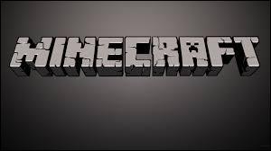 Qui n'a jamais fait de vidéo de Minecraft ?