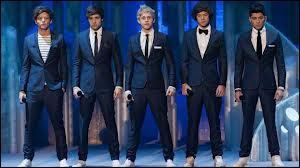 Dans quelle émission les One Direction ont-ils fait une apparition ?