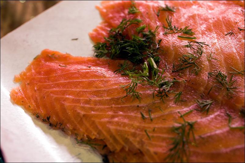 Ce poisson, il l'adore, ça lui permet de constituer des réserves de graisse, utiles durant son long sommeil hivernal !