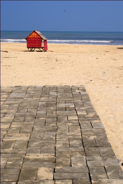 En quelle année le slogan  Sous les pavés, la plage  a-t-il été inventé ?
