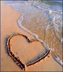 J'avais dessiné sur le sable, son doux visage qui me souriait, puis il a plu sur cette plage...  . De quelle chanson ces paroles sont-elles extraites ?