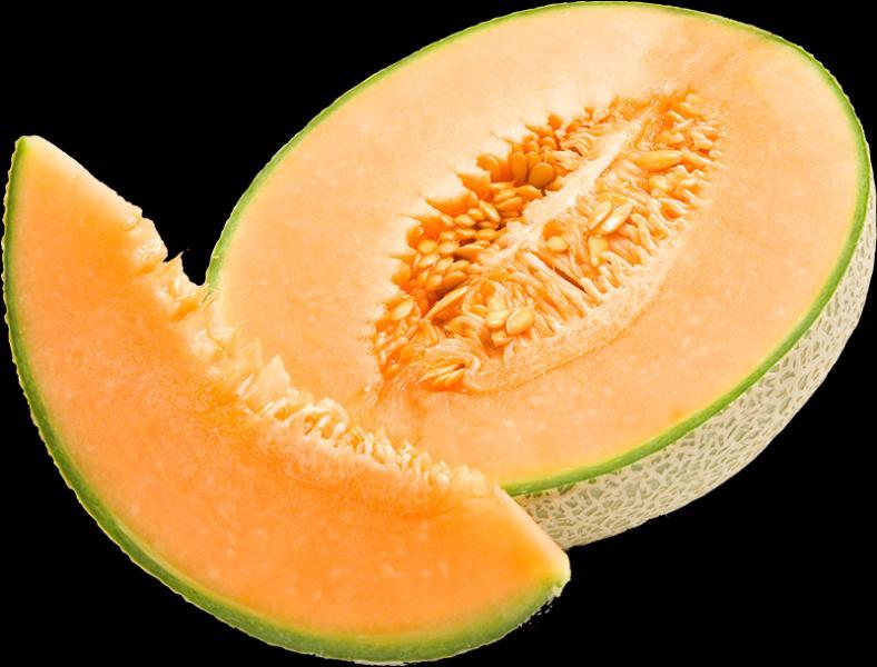 Ne pas me confondre avec le melon d'eau, je suis :