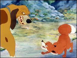 Rox est un renard et Rouky un chien , dont l'amitié est menacée lorsque le maître de Rouky décide d'en faire ...