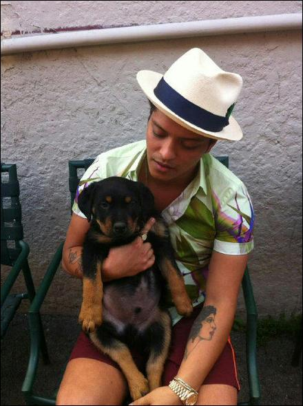 Comment se nomme le chien de Bruno ?