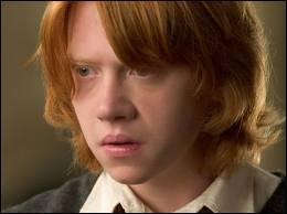 ''TU ES UNE SORCIÈRE, OUI OU NON ! '' Dans quel livre trouvons-nous cette réplique dites à Hermione ?