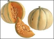 Le melon est un  faux-fruit , c'est une plante dont le fruit est comestible, il appartient à la famille des cucurbitacées comme la courge, le portiron, etc... Mais ce nom peut aussi être...