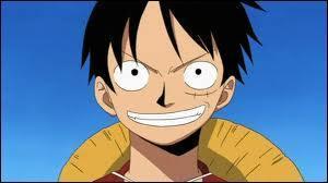One Piece : Qui sont-ils ?