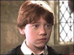 Que vomit Ron lorsque son sortilège s'est retourné sur lui ?