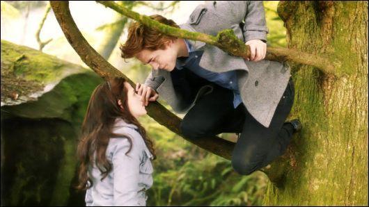 Comment Edward qualifie-t-il l'odeur de Bella ?